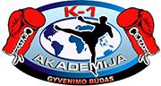 K1 akademija